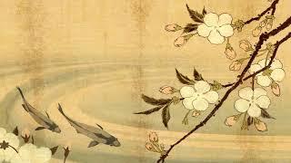Traditional Japanese Music   Koi Pond   Shamisen, Koto & Taiko Music