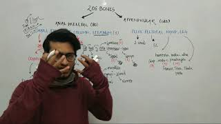 Trick to Learn all 206 Bones of Human Body- Locomotion & Movement Trick by Vipin Sharma