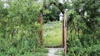 Faszination Naturgarten