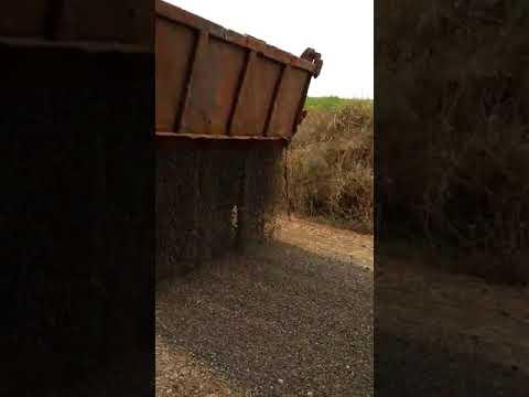 Recuperação das estradas gerais de Lagoa dos Três Cantos