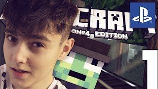 MineCraft PlayStation 4 #1 - Seria z YouTuberami! /w skkf