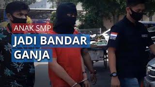 VIDEO Bandar Ganja Masih Anak SMP, Dipasarkan Melalui Facebook hingga Ditangkap Polres Cimahi