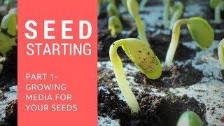 Seed Starting Series - Part 1 - Watch this Before Germinating!! Growing Media for Seed Starting