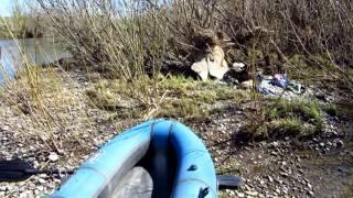 Рыбалка на реке уньга кем обл карпа