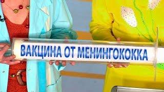 Жить здорово! Опасные инфекции. Менингит.  (25.03.2016)