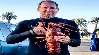 Diving For California Spiny Lobster In The Daytime