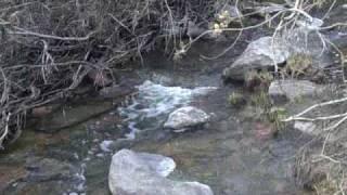 preview picture of video 'Весенний ручей'