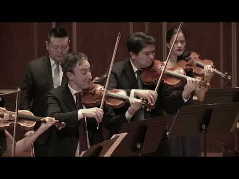 Sophia plays the 4th violin solo in Vivaldi's Concerto for 4 Violins with the A Far Cry ensemble in Boston, from January 2019.