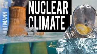 Nuclear Power Plants Not Prepared for Climate Change (w/ Paul Gunter)