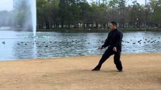 Blue Siytangco - Chen Style Taiji Sword - Tai Chi @ Hermann Park in Houston Martial Arts