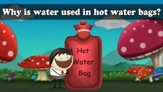 Specific Heat of Water - Why is water used in hot water bags? | #aumsum #kids #science