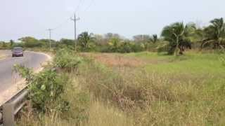 preview picture of video '12.5-Acre Highway Frontage Northern Belize'