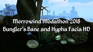 Morrowind Modathon 2018 - Bunglers Bane and Hypha Facia HD