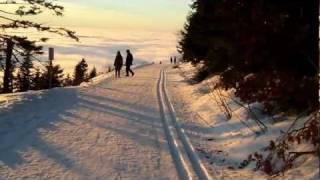 preview picture of video 'Mummelseeloipe Richtung Unterstmatt am 31. Dezember 2010'