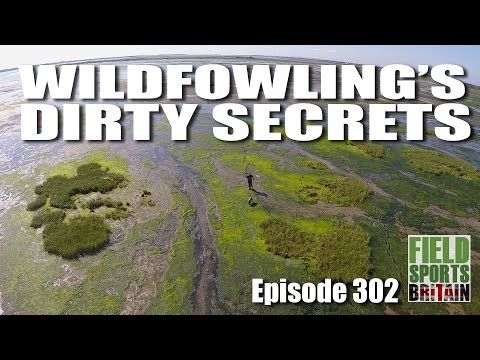 Fieldsports Britain – Wildfowling's Dirty Secrets