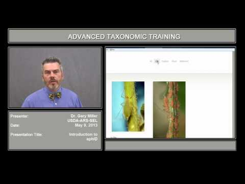 Video Introduction to AphID