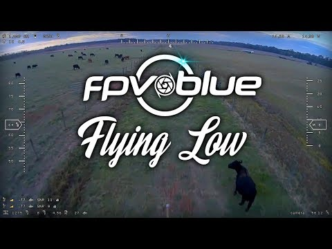 fpvblue--flying-low