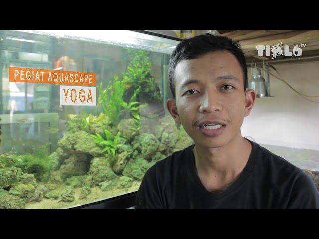 Mengenal Setup Aquascape dan Perawatannya