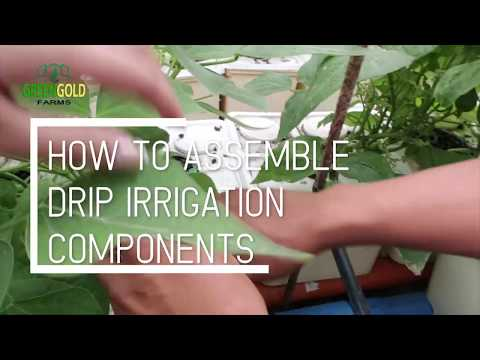 How to Assemble Drip Irrigation Components