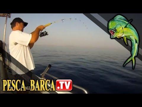 Caratteristiche che pescano dalla barca una filatura