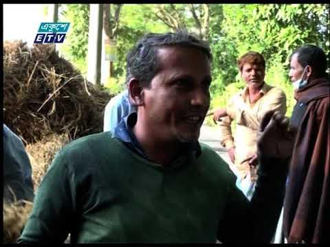 চট্টগ্রাম অঞ্চলে ধানের বাম্পার ফলন হলেও ন্যায্য দাম পাচ্ছে না কৃষক