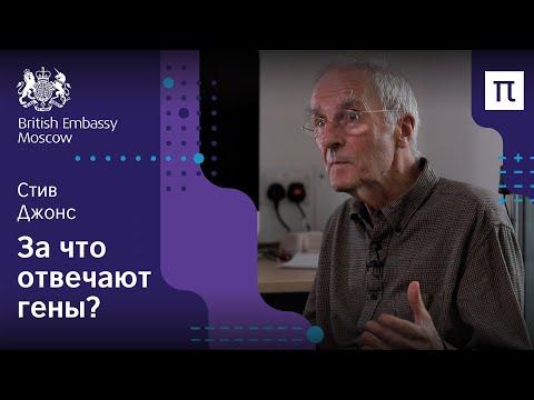 Гены и среда — Стив Джонс / ПостНаука