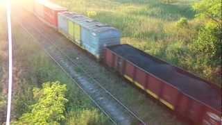 preview picture of video '8402 Doble pechuga en cercanias de Cabred (12-01-2013)'