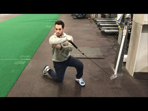 Half-Kneeling Cable External Rotation at 90 Degrees -Scapular Plane