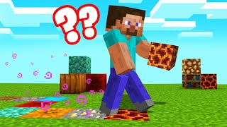 TOUCH BLOCK = RANDOM BLOCK In MINECRAFT! (Confusing)