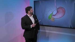 Gallbladder and the Human Body
