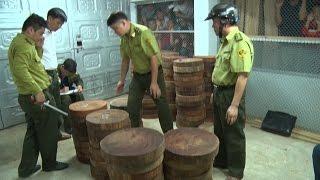 Tin Tức 24h: Hà Giang phát hiện vụ tàng trữ trái phép lâm sản lớn