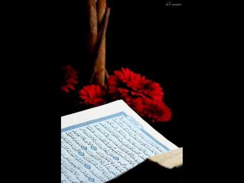 الشيخ محمد أيوب – سورة نوح