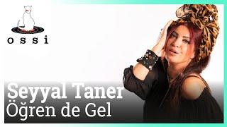 Seyyal Taner / Öğren De Gel (Selami Bilgiç Versiyon)