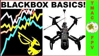 Micro FPV Drone Tuning Guide | Part 2 - BLACKBOX EXPLORER BASICS!