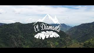 Fly in Helicopter from Medellin to Finca El Diamante Hotel Boutique !