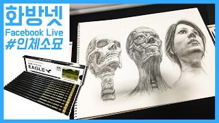 [화방넷 Live] 미술연필 이글연필을 이용해 인체소묘, 인물드로잉 그리는법,