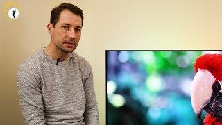 Philips OLED+ 903 TV im Überblick
