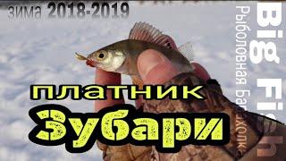 Платная пруды для рыбалки в орловской области