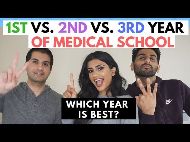 1st vs 2nd vs 3rd Year Medical Student Comparison