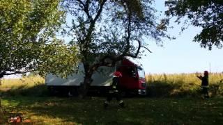 Wietrzno: Jabłoń spadła na ciężarówkę