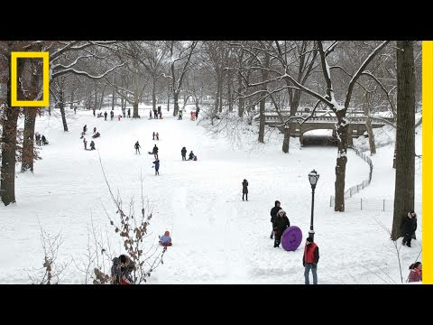 NYC's Non-Blizzard Was Beautiful | National Geographic thumbnail