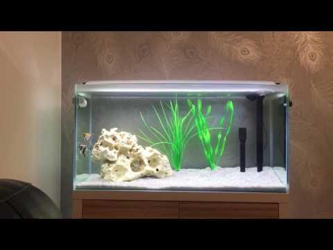 Fluval F90 Fresh Aquarium Review