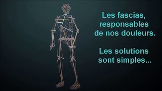 les fascias, responsables de nos douleurs