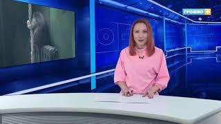 Новости Гродно (выпуск 23.10.18) //News Grodno // Гродно Плюс