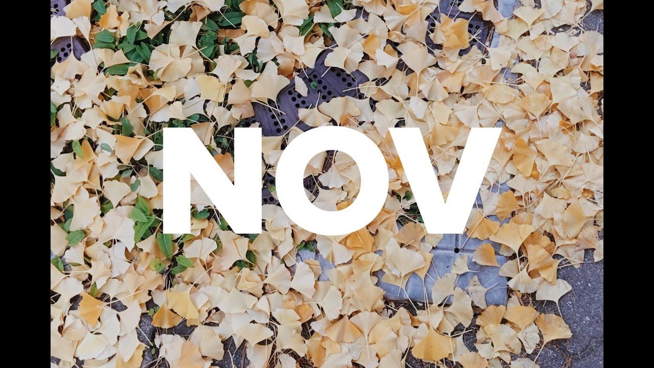 NOVEMBER / ONE SEC EVERYDAY Screenshot Download