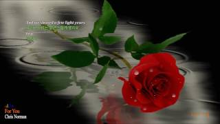 For You - Chris Norman (lyrics)