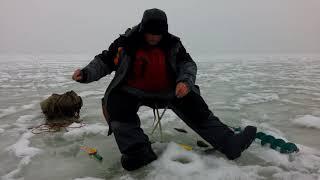 Отдых и рыбалка на жигулевском море
