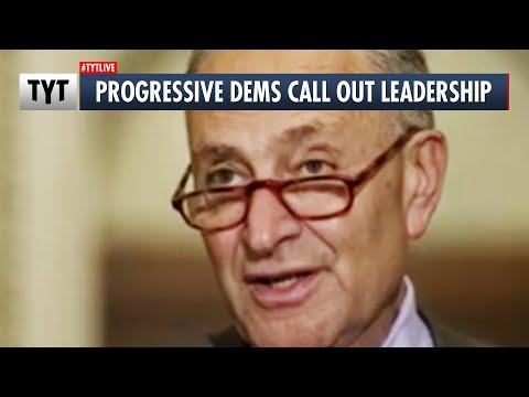 Senate Democrats Grill Chuck Schumer on Losses