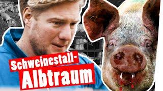 Bestrafung: Marc kriegt Panik im Schweinestall || Das schaffst du nie!