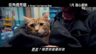 街角遇見貓電影劇照1